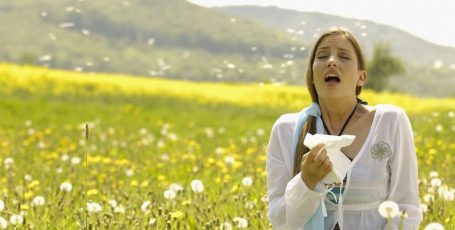 Когда цветение не в радость: как подружиться с аллергией на пыльцу (поллинозом)