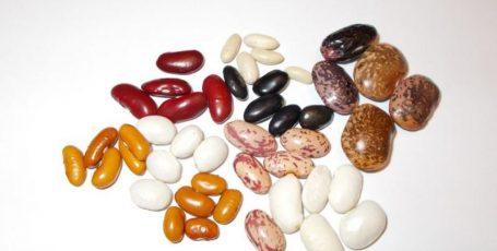 Польза фасоли при сахарном диабете