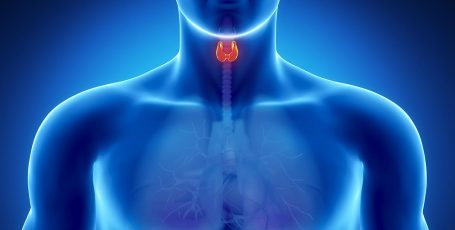 Особенности диеты для лечения щитовидной железы